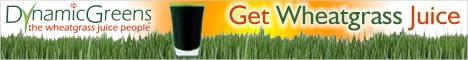 dynamicgreens-banner